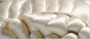 Mulberry Silk Fibers